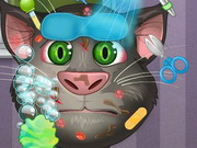 Talking Tom Makeover Game