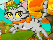 Purrfect Kitten Halloween Game