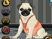 My Pug Petcare And Dressup Game