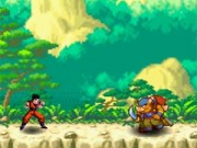 Dragon Ball Fighting 27