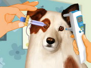 Eye Care Dog With A Blog Game