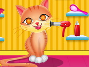 Cute Cat Care Game