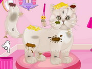 Persian Cat Princess Spa Salon Game