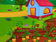 Farm Cleaning And Decor Game