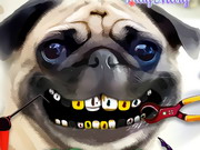 Pug Teeth Problems Game