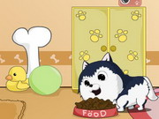 Cute Dog Contest Game