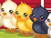 Easter Baby Chick Care Game