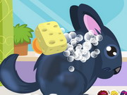 Chinchilla Pet Care Game