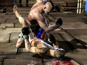 Mma Fighters Game