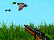 The Duck Hunter Game